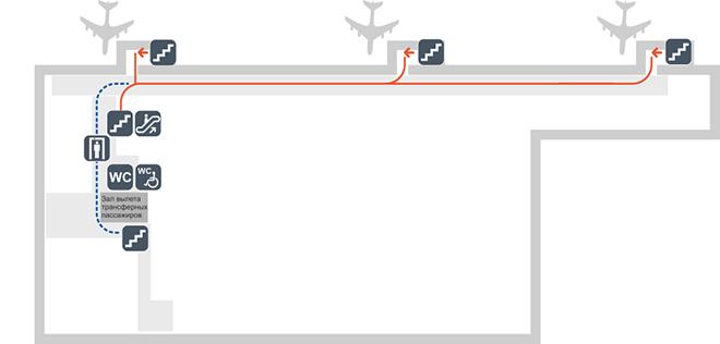 Схема терминала аэропорта Толмачёво сектор Б (2 этаж)